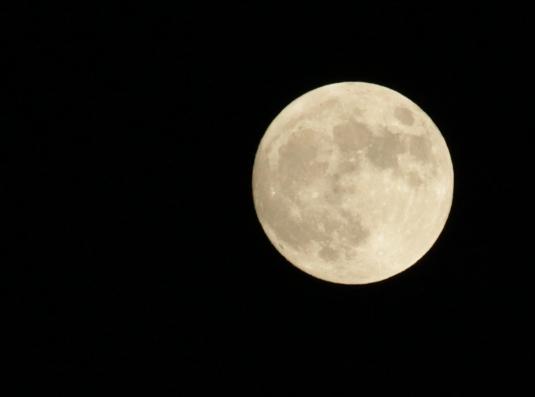Moon2556