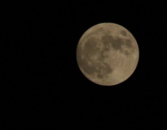 Moon2558