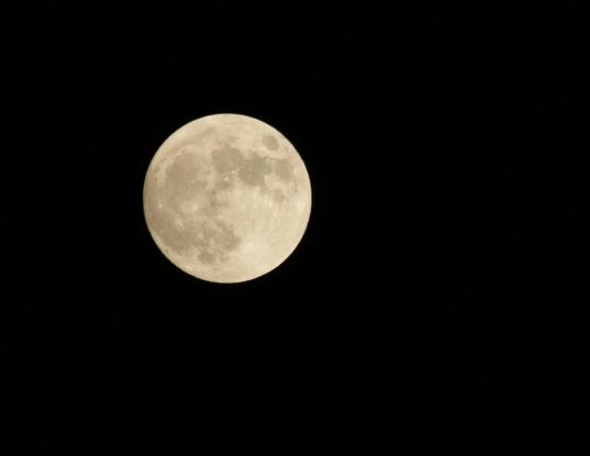 Moon2568