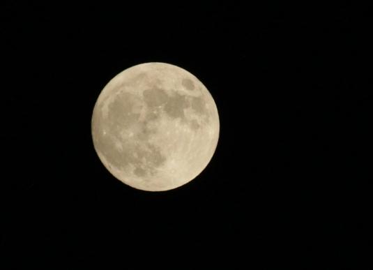 Moon2585