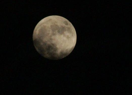 Moon2602